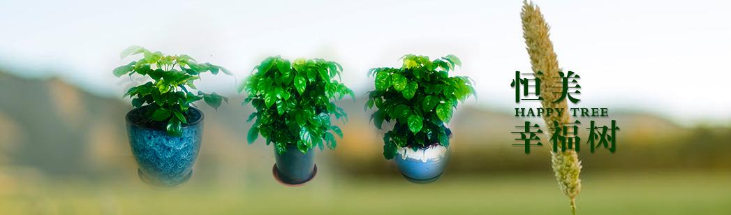 大连园林绿化